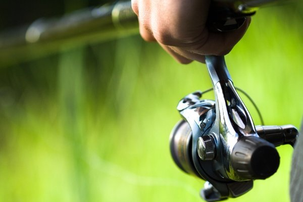 Fishing Reel 105064190